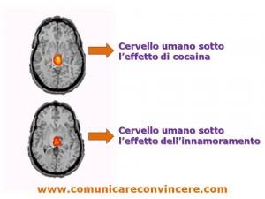 il cervello nell'innamoramento